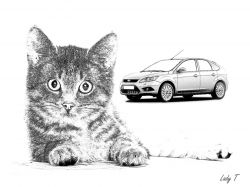Artwork preview : Prints, cat and ford focus